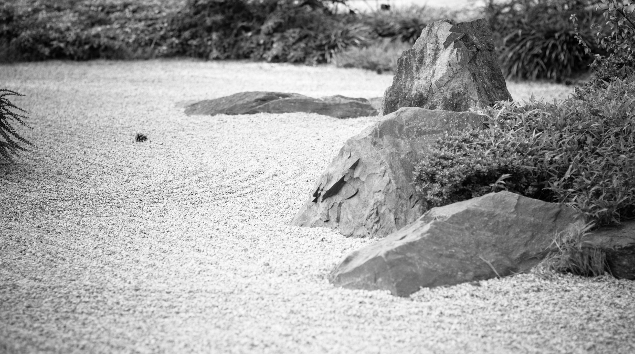 Zen-Meditation - Eine Einführung in die Zen-Praxis